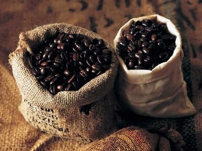 Giá cà phê Tây Nguyên đảo chiều tăng lên 39,3-40 triệu đồng/tấn