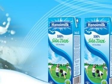 Công ty thực phẩm Indonesia muốn mua 90-100% cổ phần Hanoimilk?