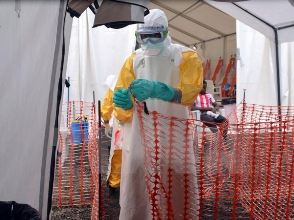 Liberia mở lại các cửa khẩu sau khi dịch Ebola bắt đầu giảm