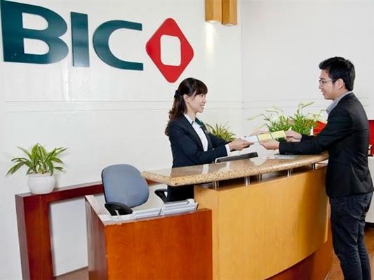 BIC: Lợi nhuận 2014 tăng, bổ nhiệm Phó tổng giám đốc mới từ công ty con