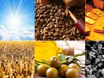Kim ngạch xuất khẩu nông, lâm, thủy sản giảm tháng thứ 2 liên tiếp