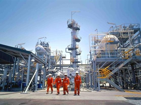 GAS đã bán hơn 5 triệu cổ phiếu PVB sau 2 lần đăng ký bất thành