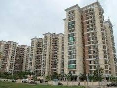 TP Hồ Chí Minh tháo gỡ dự án nhà ở chậm triển khai