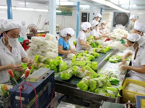Nhật, Mỹ, Pháp mua bún gạo, bánh phở Việt Nam làm không xuể
