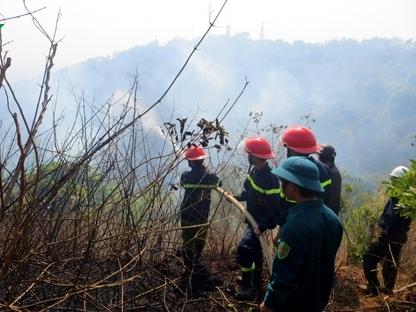 Cháy rừng phòng hộ Bắc Biển Hồ, Gia Lai