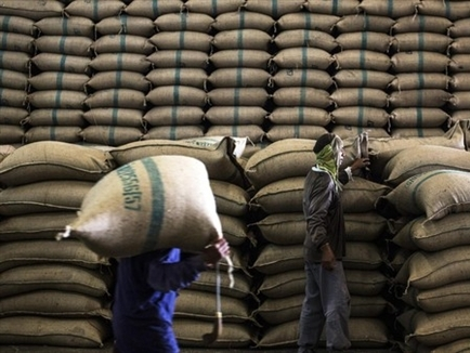 Thái Lan tiếp tục mở bán gạo lưu kho bất chấp cạnh tranh giá