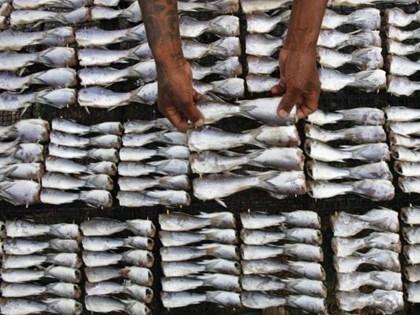 EU cảnh báo cấm nhập khẩu hải sản Thái Lan