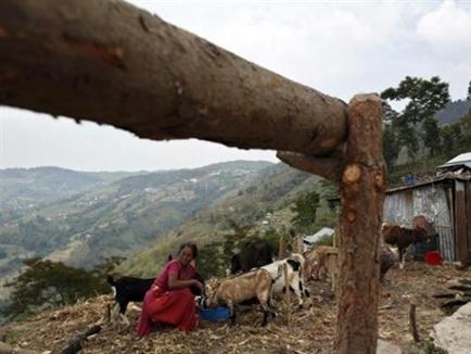 Thị trấn Trung Quốc lún và xê dịch vì động đất ở Nepal