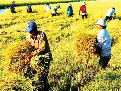 Triển lãm Quốc tế chuyên ngành nông nghiệp tại Việt Nam