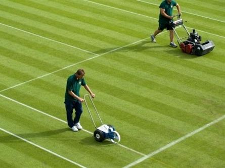 Chuyện về sân cỏ giải Wimbledon