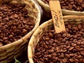 ICO: Thị trường cà phê coi chừng sốc giá