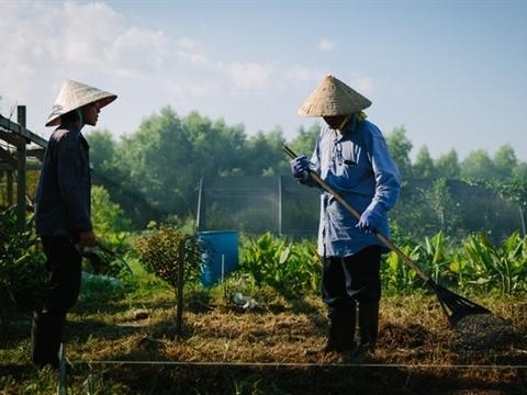 Cộng đồng Việt kiều đứng dậy sau bão Katrina như thế nào?