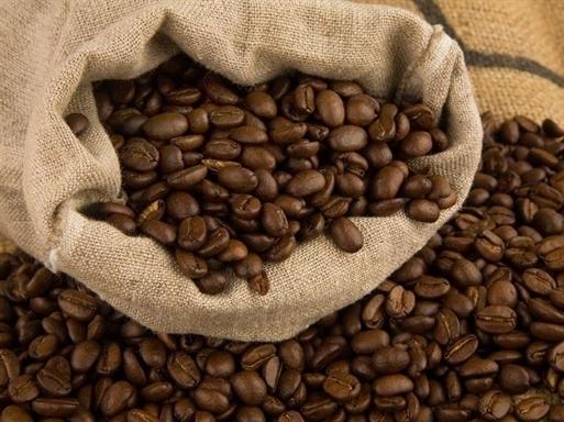 Bản tin thị trường cà phê ngày 9/9