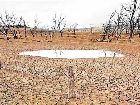 El Nino sẽ đạt đỉnh vào cuối năm nay