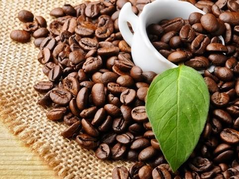 Bản tin thị trường cà phê ngày 18/9