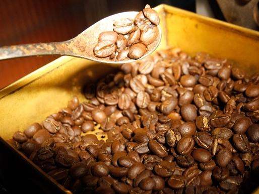 Bản tin thị trường cà phê ngày 26/9