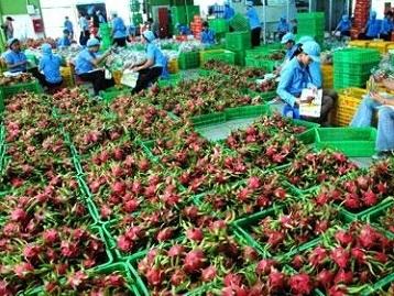 Xuất khẩu nông, lâm, thủy sản giảm 5%, đạt 21,65 tỷ USD