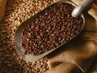 Bản tin thị trường cà phê ngày 1/10