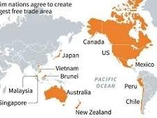 Các điều khoản TPP có gì đáng chú ý?