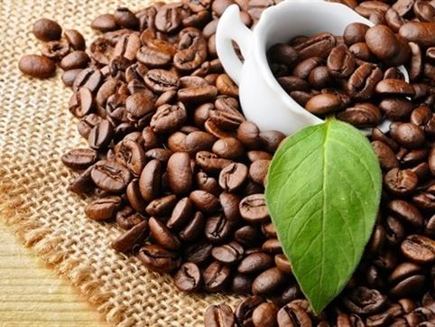 Bản tin thị trường cà phê ngày 15/10