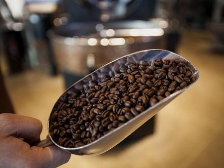 Bản tin thị trường cà phê ngày 22/10
