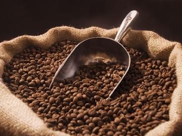 Bản tin thị trường cà phê ngày 23/10