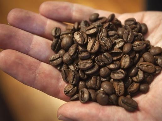 Bản tin thị trường cà phê ngày 31/10