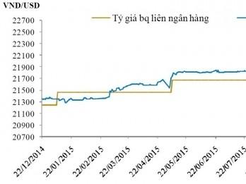 BVSC: Tỷ giá sẽ ổn định ở mặt bằng giá như hiện nay