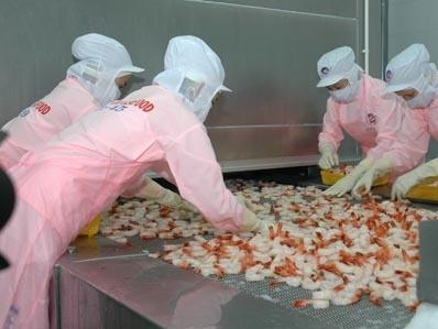 Thực phẩm Sao Ta đạt doanh số hơn 110 triệu USD trong 10 tháng