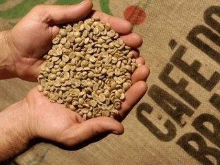 Bản tin thị trường cà phê ngày 9/12