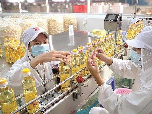 Dầu ăn từ mỡ cá: Hướng đi mới cho ngành dầu ăn?