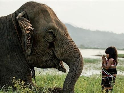 10 bức ảnh về sự đa dạng văn hóa tại Việt Nam của nhiếp ảnh gia Pháp