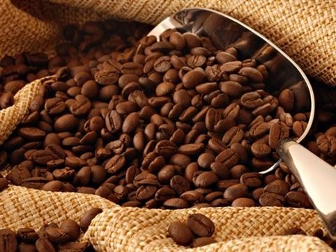 Bản tin thị trường cà phê ngày 1/3