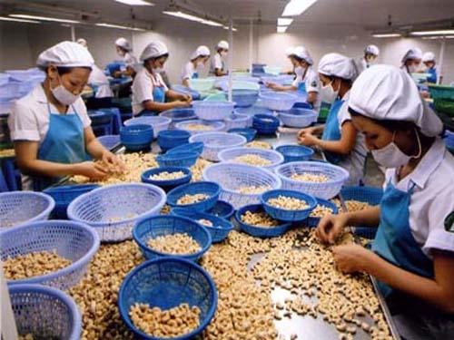 Xuất khẩu nông lâm thủy sản đạt trên 10 tỷ USD sau 4 tháng