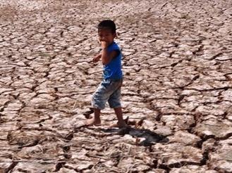 Hạn, mặn gây thiệt hại trên 5.500 tỷ đồng