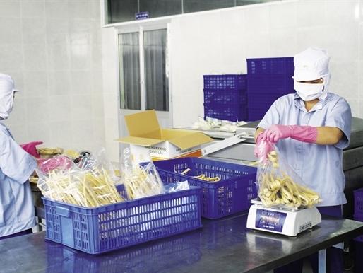 Những thị trường ngách triệu đô của ngành thực phẩm