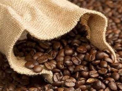 Nông dân ký gửi cà phê có nguy cơ mất trắng vì đại lý vỡ nợ