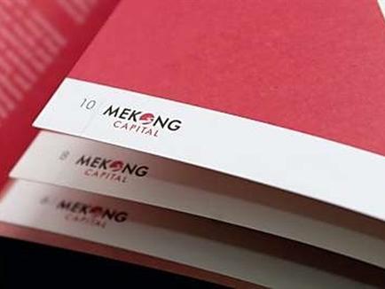 Mekong Capital rót 112 triệu USD vào ngành tiêu dùng, bán lẻ Việt Nam
