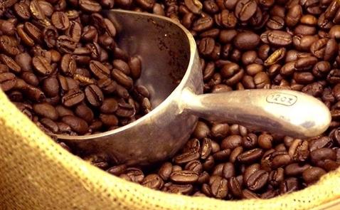 Thị trường cà phê ngày 30/7