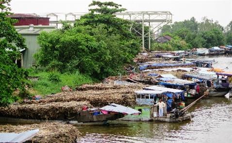 Giá đường Việt Nam gấp đôi Thái Lan