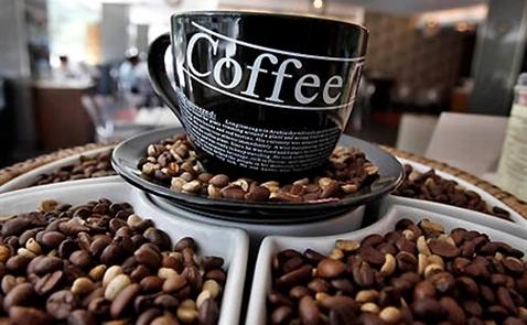 Giới đầu cơ lạc quan về giá cà phê khi sản lượng của Việt Nam dự báo giảm