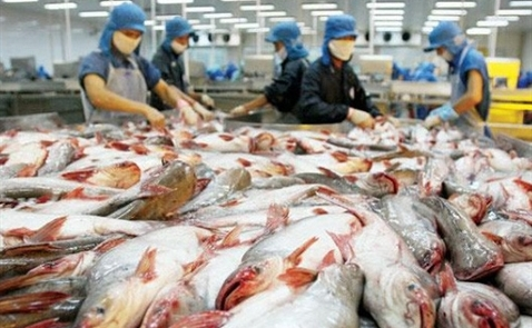 Thủy sản Hùng Vương ước lãi trước thuế 2016 trên 500 tỷ đồng