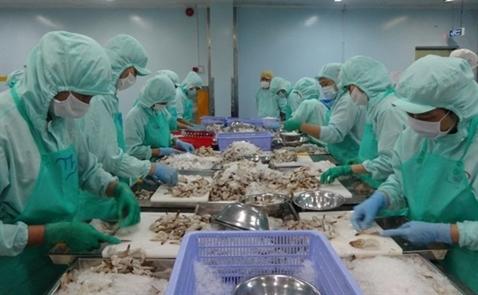 Doanh nghiệp thủy sản hạ 96% kế hoạch vì cá chết ở miền Trung