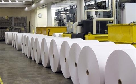 Đại gia Đài Loan muốn xây nhà máy giấy 240 triệu USD ở Việt Nam