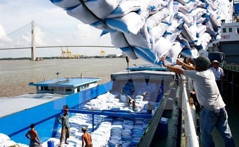 Xuất khẩu gạo có thể đạt mục tiêu 5,65 triệu tấn trong năm nay