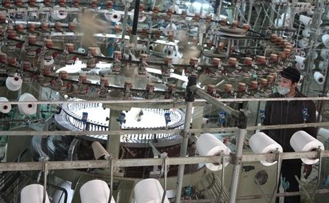 Đài Loan đầu tư nhà máy giấy 220 triệu USD ở Tiền Giang