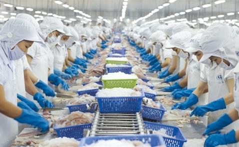 Việt Nam có & không TPP: Kế hoạch B của Vĩnh Hoàn