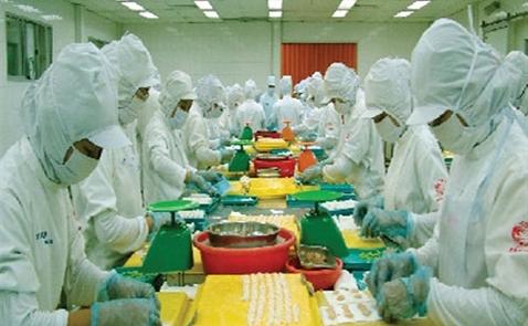 CJ muốn mua 47% cổ phần công ty thực phẩm Cầu Tre