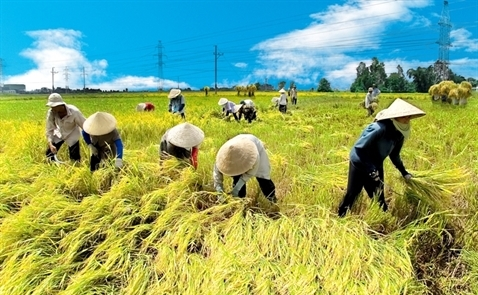 """Thủ tướng sẽ chủ trì Hội nghị """"Xây dựng nền công nghiệp nông nghiệp Việt Nam"""""""