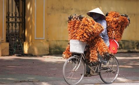 Bất chấp định giá cao, chứng khoán Việt vẫn đắt hàng